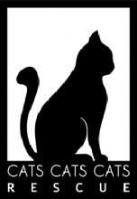 CATSCATSCATS 222