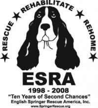 ESRA logo ADI 222W