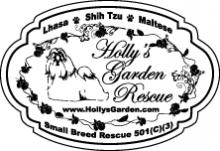 hollys garden rescue ADI